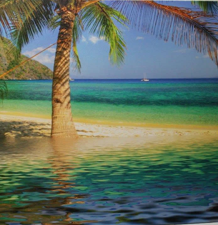 Island Beach Photograph Print On Canvas Picture Framing In Boca Raton Florida